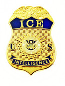 Immigration and Customs Enforcement Intelligence Mini Badge Lapel Pin