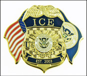 Immigration and Customs Enforcement Mini Badge and Flags Lapel Pin