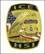 ICE Homeland Security Investigations Special Agent Challenge Coin - Front
