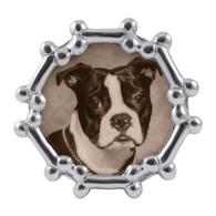 Dog Bone Frame Round
