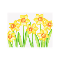 Daffodil Notecards