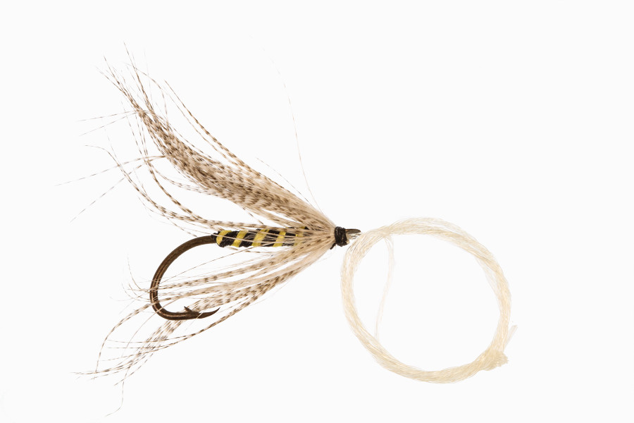 About The History and Evolution of the Trout Fly