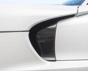 Agency Power Carbon Fiber Side Fender Inserts - 2013+ Viper