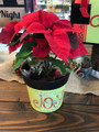 "Joy this Christmas 6"" Pot"