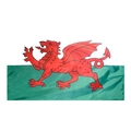 "12"" x 18"" Wales Flag"
