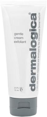 Dermalogica Gentle Cream Exfoliant - beautystoredepot.com