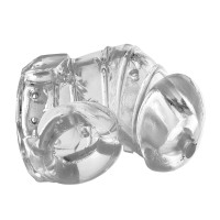 Detained 2.0 Restrictive Chastity Cage with Nubs