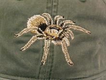 Hat - Tarantula