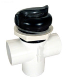 "Waterway Diverter Valve S Style 2 Port 2"" Two Tone Glitter 600-3039DSG1B"