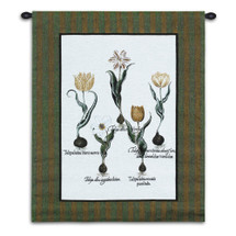 Tulip Study I | Woven Tapestry Wall Art Hanging | White and Yellow Tulips with Latin Names | 100% Cotton USA Size 33x26 Wall Tapestry