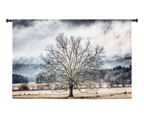 January | Woven Tapestry Wall Art Hanging | Barren Winter Tree in Isolated Field | 100% Cotton USA Size 59x38 Wall Tapestry