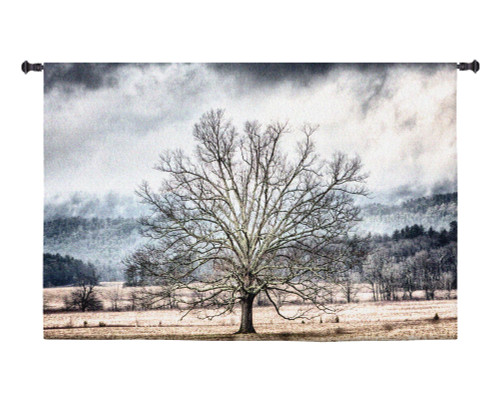 January | Woven Tapestry Wall Art Hanging | Barren Winter Tree in Isolated Field | 100% Cotton USA Size 53x34 Wall Tapestry