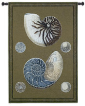 Nautilus | Woven Tapestry Wall Art Hanging | Nautical Pair of Spiraling Shells | 100% Cotton USA Size 53x36 Wall Tapestry