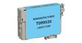 Epson T099520