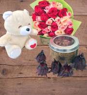 Petite Amoure + bear + chocolate hibiscus