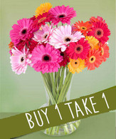 Daisies Bouquet: BUY 1 TAKE 1