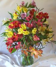 Peruvian lily (alstromeria) bouquet