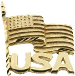 14kt Yellow Gold Flag Pin