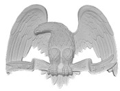 Small Perched Eagle A15