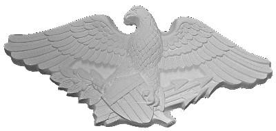 American Eagle A16
