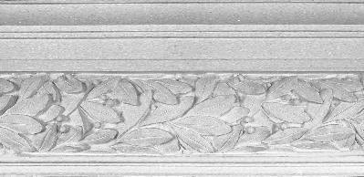 Plaster Molding featuring a varied leaves pattern