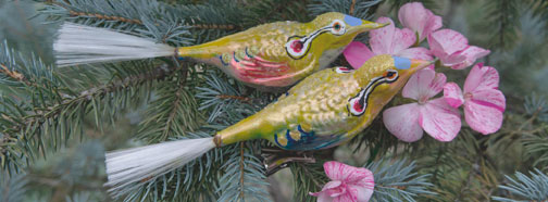 yellow-bird-banner-2.jpg
