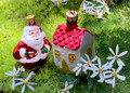 Elfin Santa & House