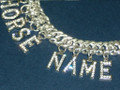 New Customized Horse's Name Nose Chain with Diamonds