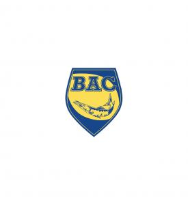 logo-275x300.png