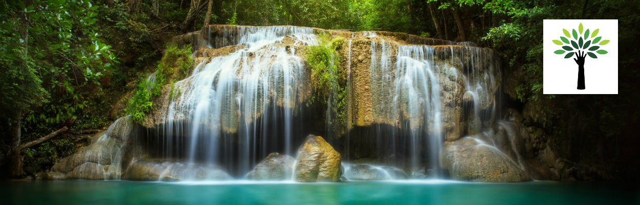 rainforest-health-waterfall.jpg