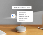 Google Home Mini from Rainforest Health
