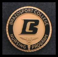 Brazosport College Classic Nursing Pin