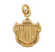 Delta Zeta Crest Pendant