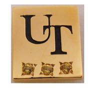 UT Austin 15 Year Service Pin