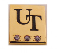 UT Austin 30 Year Service Pin