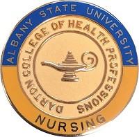 """7/8"""" Nursing Pin"""