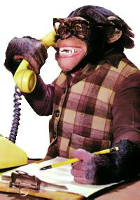 monkeyshines2.jpg