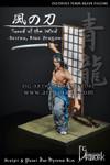 DG Artwork:Sword of the Wind - Seiryu, Blue Dragon