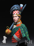 FeR Miniatures - 92nd Regiment of Foot, Gordon Highlanders Waterloo, 1815