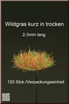 Fredericus Rex Dry Tufts of Grass SHORT