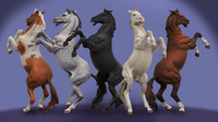 Andrea Miniatures: Series General - Rearing Horse