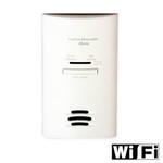 WiFi Carbon Monoxide Detector Hidden Camera