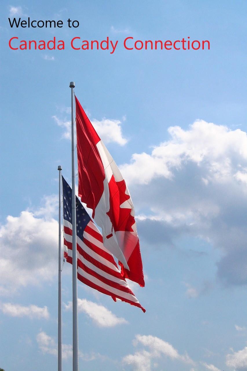 canadianusflags.jpg