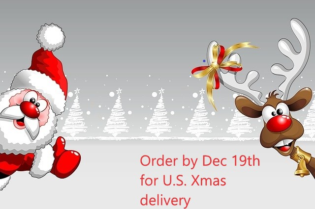 christmascarddelivery.jpg