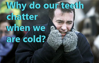 Why do our teeth chatter when we are cold?