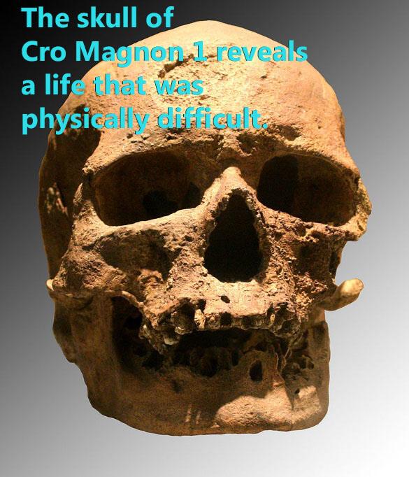 Cro-Magnon 1