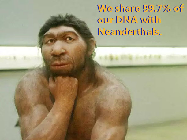 A physical interpretation of Neanderthal
