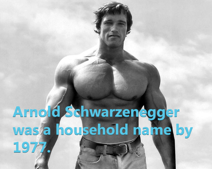 Arnold becomes a household name