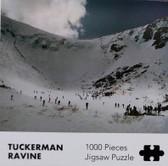 Tuckerman Ravine Puzzle