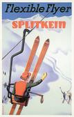 Splitkein Artiplaq Poster